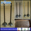 Prise et Exhaust Engine Valve pour Isuzu (ALL MODELS)