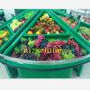 Présentoir acrylique Bestselling de fruits et légumes de conception de mode