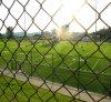 Campo de esportes Using cerca revestida da ligação Chain do PVC