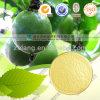 Extracto de la fruta de Arhat del edulcorante