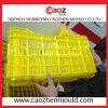 Heißer Verkauf/haltbare Plastikgemüserahmen-Form
