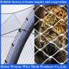 동물 보호를 위한 304 스테인리스 철사 밧줄 동물원 메시