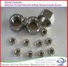 Noix Hex de l'acier inoxydable 316 DIN934 M16
