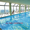 Mosaico di vetro della piscina