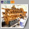 Gerador verde a favor do meio ambiente da biomassa da energia
