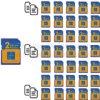 GPS-Daten SD Card Vervielfältigung (S1B-1001D)