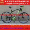 Tianjin 26 MTB Bicycle 21s Derailleur para Shimano