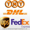 SwitherlandへのブランドElectronic Products Courier Express From中国