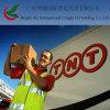Courier de Global Logistics Transport Online Shipping Delivery Company DHL/UPS/TNT exprès de Chine à dans le monde entier