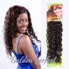 Alta qualidade Natural Curly Human Hair Extensions para Black Women (GP-EU-CL)