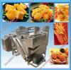 Fournisseur professionnel de friteuse profonde électrique d'acier inoxydable
