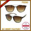 Óculos de sol clássicos de Demi do desenhador F6090 novo, CE&FDA