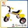 Il fornitore Trike della Cina gioca il commercio all'ingrosso molle della fabbrica del triciclo di bambini della sede