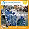 Planta de embotellamiento rotatoria del agua de la bebida del resorte