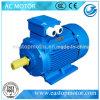 Motor der Cer-anerkannter Pumpen-Y3 für Kompressoren mit Silikon-Stahl-Blatt Stator