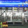 Ligne remplissante de jus automatique de bouteille (RCGF18-18-6)