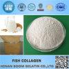 Peptide cosmetico di Collgen dei pesci del grado per la Anti-Grinza