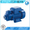 P.M. All Pumps für Fixed Fire Protection mit 50/60Hz