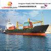 De Verschepende Dienst van de oceaanVracht (China aan ABIDJAN, Ivoorkust, Afrika)