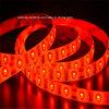 Le CE a reconnu la lumière de bande flexible de 60LEDs/M SMD3528 RVB DEL