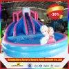 Glissière d'eau extérieure gonflable congelée gonflable commerciale de /Frozen de glissière de mode de qualité