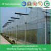 La vendita calda più poco costosa serra di plastica agricola/commerciale di Sainpoly