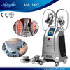 Machine Aml-1407 de Cryolipolysis de 4 traitements