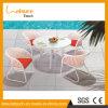 白い屋外の庭の藤の防水表および椅子