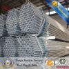 Los materiales de construcción galvanizados de la pipa galvanizaron la sección hueco