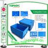 Caixa dobrável plástica para o transporte e o armazenamento