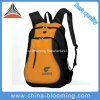 Travel esterno Sports Leisure Bag Backpack con il computer portatile Interlayer