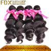 最上質のブラジルの毛(FDX-BST5)