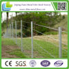 Sale를 위한 중국 Supplier Galvanized Pig Fence