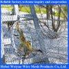 Parque zoológico animal tejido cable inoxidable de la cuerda de acero que cerca el acoplamiento del cable