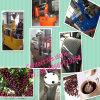 Asador automático inoxidable de /Coffee de las máquinas de la asación del café de la alta calidad