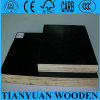 경재 또는 Combi Core 18mm Dynea Film Faced Plywood