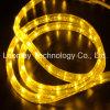 LED 네온 유연한 방수 IP65 2 철사 LED 밧줄 빛
