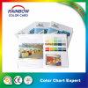 Folheto de registo personalizado do cartão da cor da impressão para anunciar
