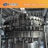 La botella del animal doméstico carbonató la máquina de rellenar del refresco/las bebidas que hacían la máquina