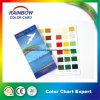 広告のための光沢のあるペンキの印刷のカラー・チャート