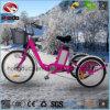 Triciclo eléctrico de la bicicleta de 3 ruedas para el cargo adulto