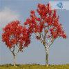 De geschraapte Boom van de Draad (D5) voor Landschap. Model (gebeëindigde) Tree