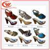 PU Outsole высокой пятки сандалий женщин единственный для повелительницы Сандалии Ботинка