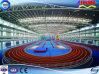 Struttura d'acciaio con ginnastica del blocco per grafici di alta qualità/palestra (SSW-020)