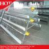 Sales caliente para Automatic Layer Chicken Cage