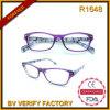 Schöne Glas-Rahmen-neue Art-Brillen