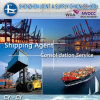 믿을 수 있는 Logistics Service Provide 또는 두바이에 Shipping Agent/Freight Forwarder From 중국