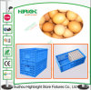 Marchio Printing Plastic Egg Crate per Egg Packaging