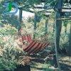Zoll stellen Mehrfarbenbaumwollhängematte für Garten her
