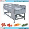 Máquina comercial da limpeza de escova dos vegetais